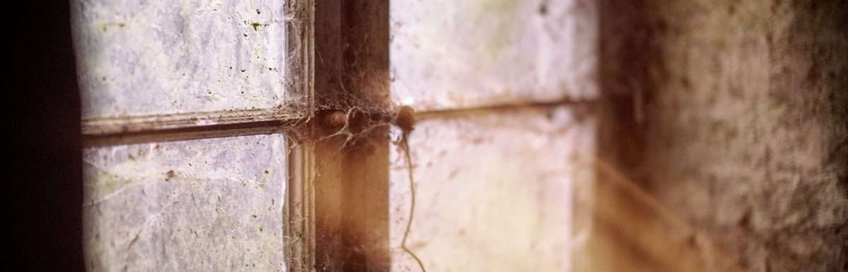 Cobwebs, Clutter and Hidden Treasure